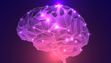 Mirror Neurons and videomodeling, evidence based science