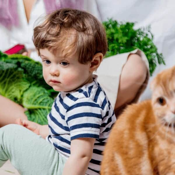 A child with speech delay or late talker and a cat