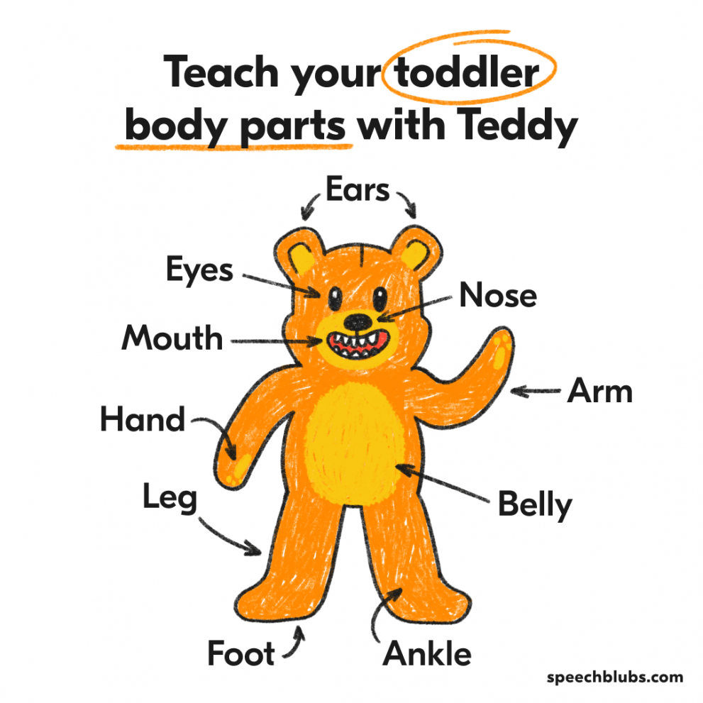 Language games with Teddy Bear
