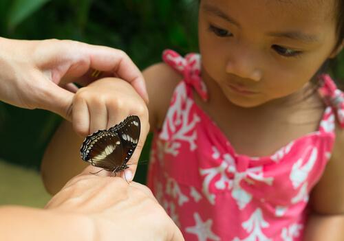 activities in nature for kids